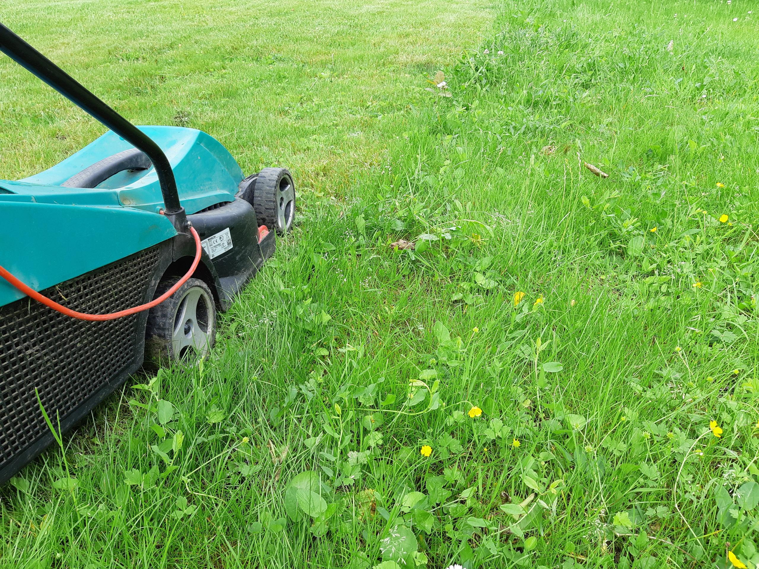 entretien jardin et pelouse à fontenay sous bois