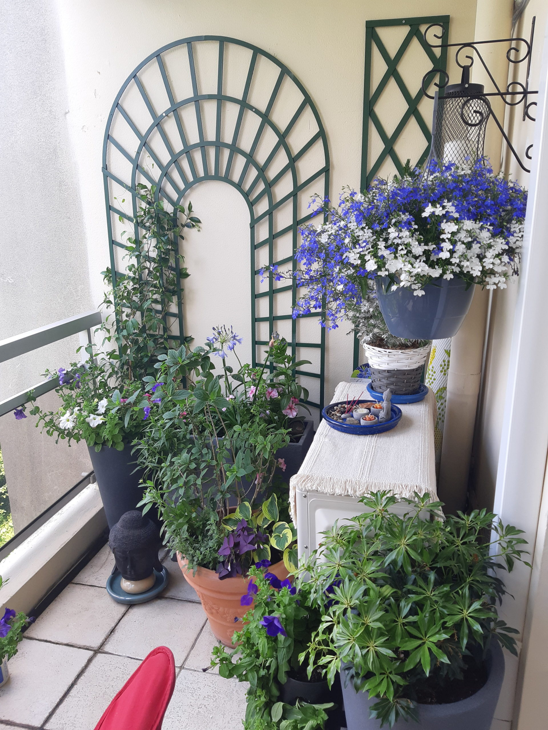 balcon fleuri Bry sur Marne